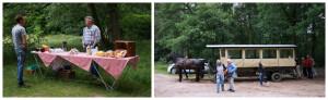 Picknick bos huifkar montferland gelderland